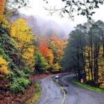 جاده عباس آباد به کلاردشت