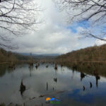 دریاچه ممرز در پاییز