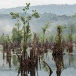 دریاچه ممرز یا ارواح