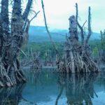 دریاچه وهم انگیز ارواح