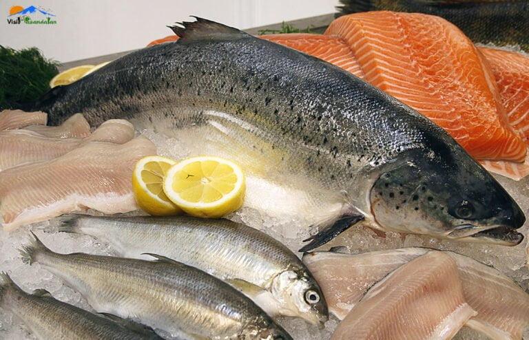 ماهی های دریای خزر
