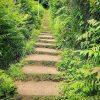 پله های قلعه