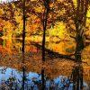 مرداب هسل در پاییز